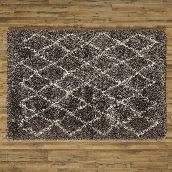Evelyn Hand-Woven Pewter Shag Area Rug by Birch Lane™