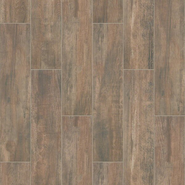 Celestial Plank 8 x 36 Ceramic Field Tile in Brown by Shaw Floors