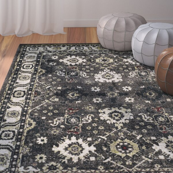 Logan Hamadan Dark Gray Area Rug by Bungalow Rose