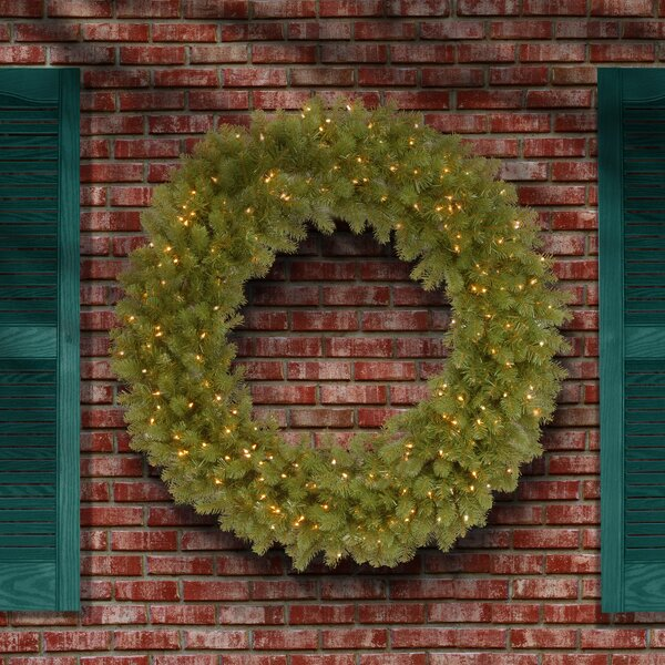 Downswept Douglas Fir Wreath by The Holiday Aisle