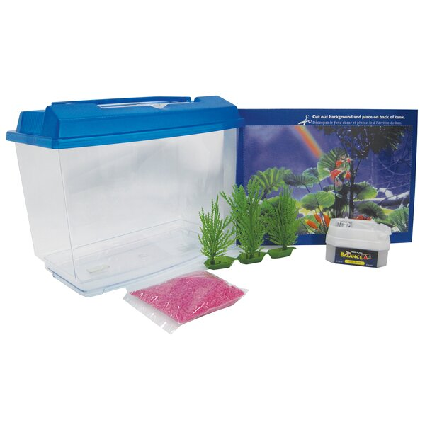 1 Gallon Goldfish and Betta Aquarium Kit by Penn Plax