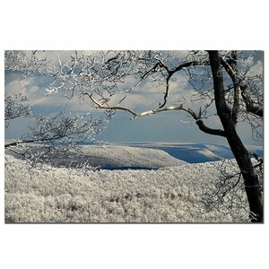'Winter Scene' by Lois Bryan Photographic Print on Canvas by Trademark Fine Art