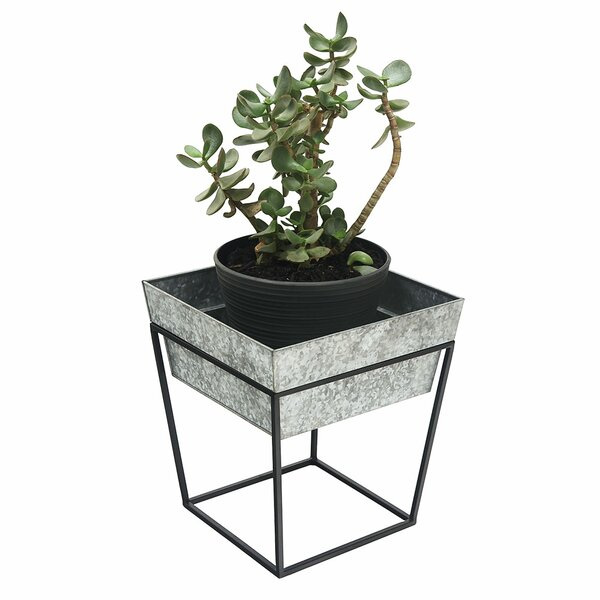 Moorgate Stand Tray Pot Planter by Winston Porter