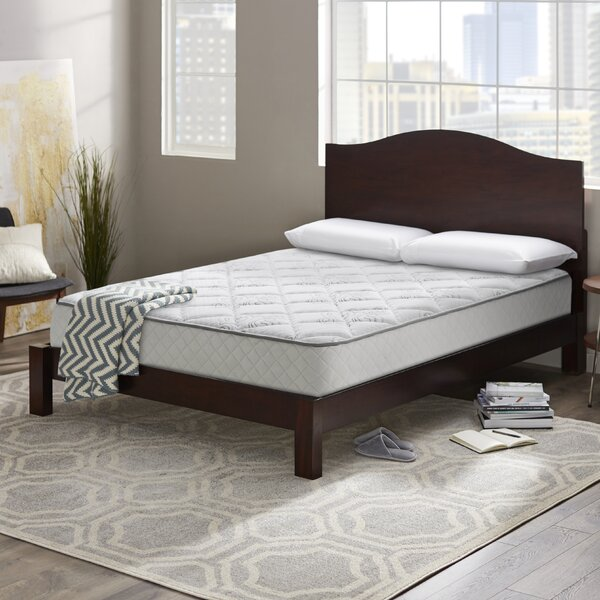 Wayfair Sleep 10 Plush Innerspring Mattress by Wayfair Sleep™