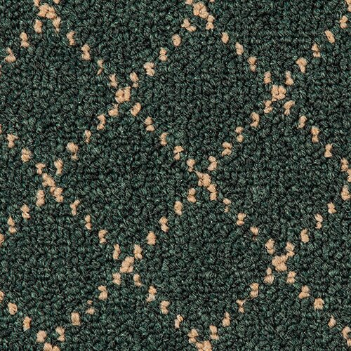 Trellis Green Area Rug by Goods of the Woods