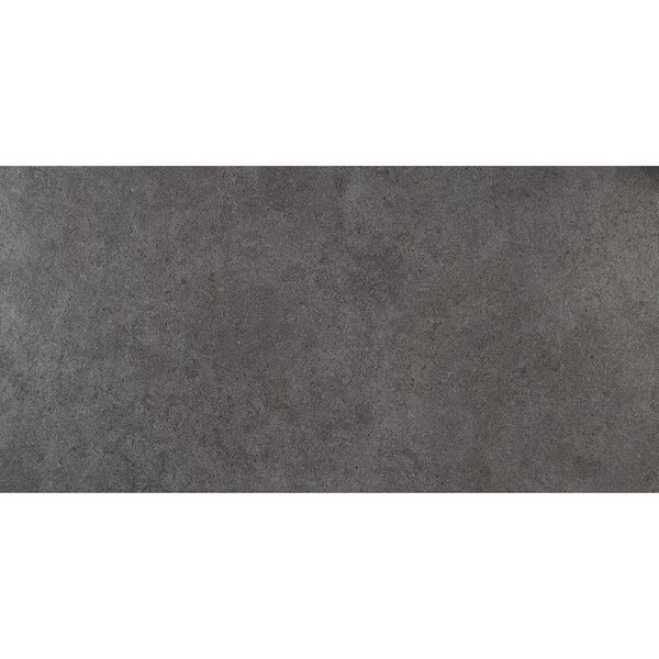 Haut Monde 12 x 24 Porcelain Field Tile in Empire Black by Daltile