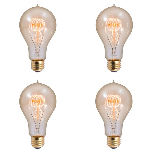 25W E26 Dimmable Incandescent Light Bulb Antique (Set of 4) by Bulbrite Industries