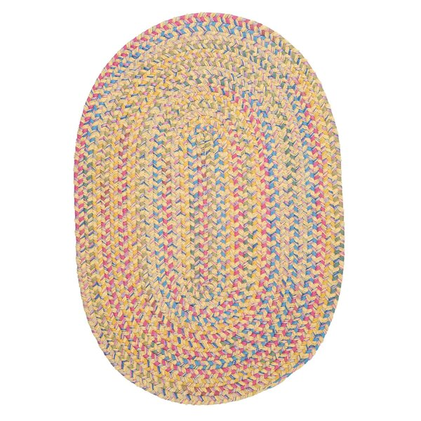 Oliver Braided Area Rug by Harriet Bee