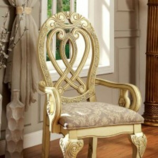 Risa Upholstered Arm Chair in Gold (Set of 2) by Astoria Grand Astoria Grand