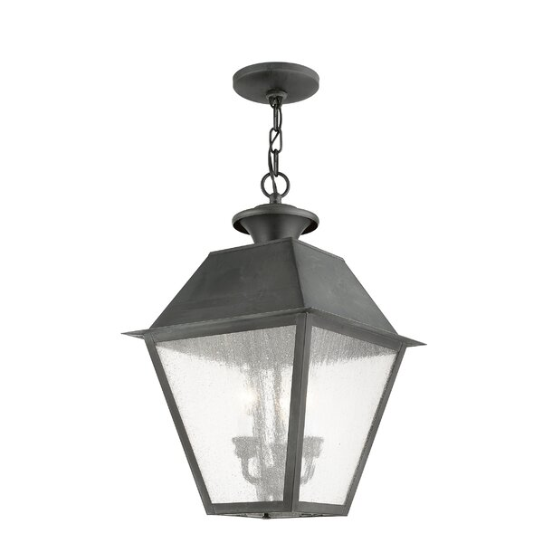 Cynda 3-Light Outdoor Hanging Lantern by Darby Home Co