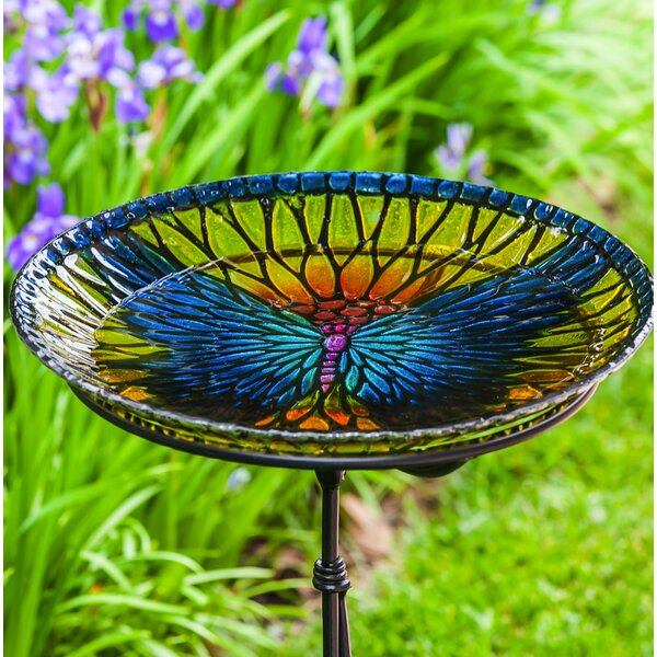 Bold Butterfly Birdbath by Evergreen Enterprises, Inc