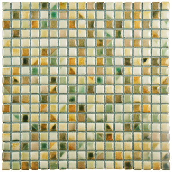 Arcadia 0.56 x 0.56 Porcelain Mosaic Tile in Springfield by EliteTile