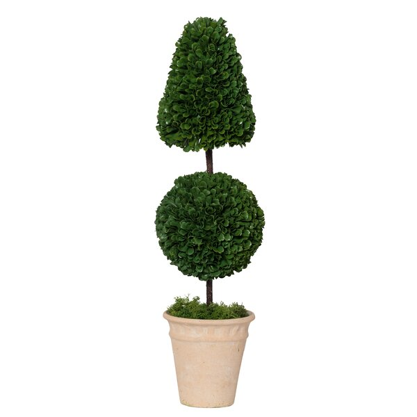 Potted Cone and Ball Faux Floor Boxwood Topiary by Wrought Studio