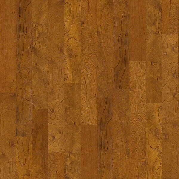 Alpine 5 Engineered Kupay Hardwood Flooring in Donald by Shaw Floors