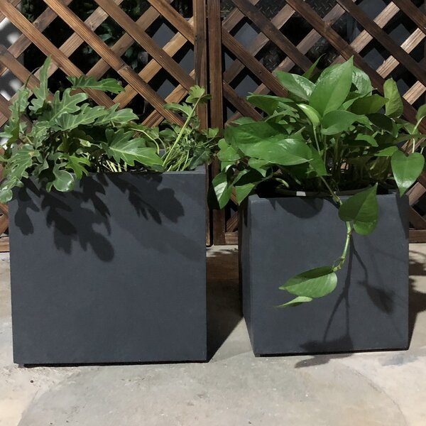 Foote Square 2-Piece Lightweight Concrete Planter Box Set by Williston Forge