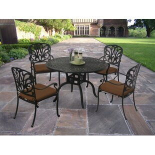 Bosch Powder Coated 5 Piece Dining Set with Cushions ByDarby Home Co