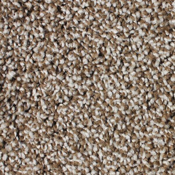 Residential 24 X 24 Cut Pile Carpet Tile By Berkshire Flooring.