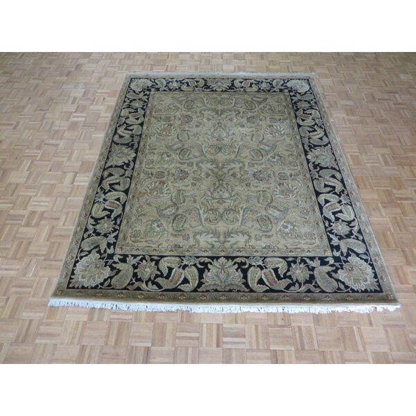 One-of-a-Kind Railey Hand-Knotted Wool Gold Area Rug by Astoria Grand