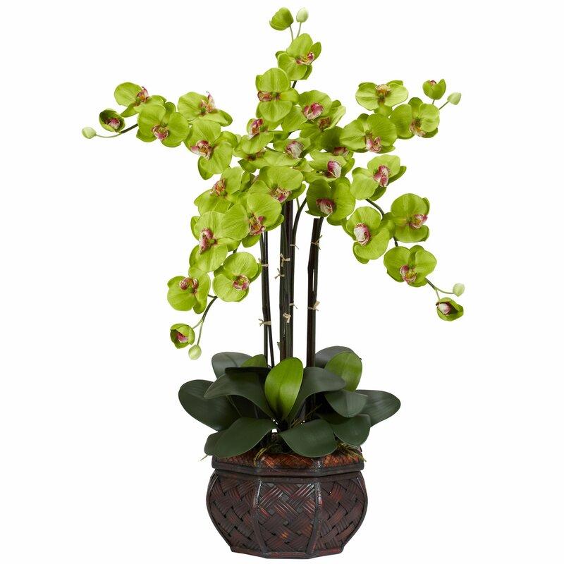 Nearly Natural Phalaenopsis With Decorative Vase Silk