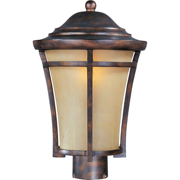 Aukerman Outdoor 1-Light Lantern Head by Darby Home Co