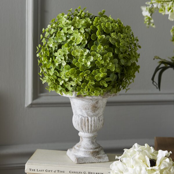 Artificial Desktop Eucalyptus Ball Topiary in Pot by Greyleigh