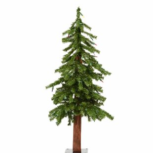 36 green pine trees christmas tree with 70 multi colored lights