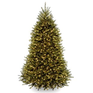 dunhill green fir artificial christmas tree with 600 clear lights with stand