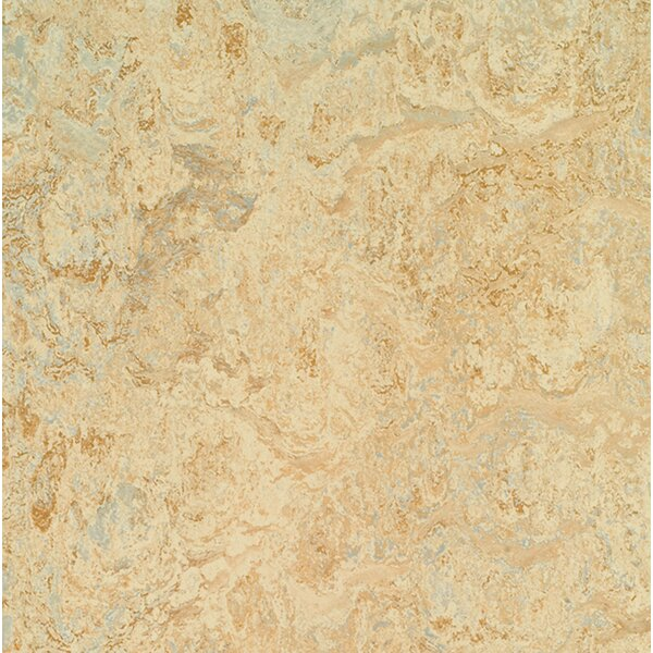Marmoleum Click Cinch Loc 11.81 x 11.81 x 9.9mm Cork Laminate Flooring in Tan by Forbo
