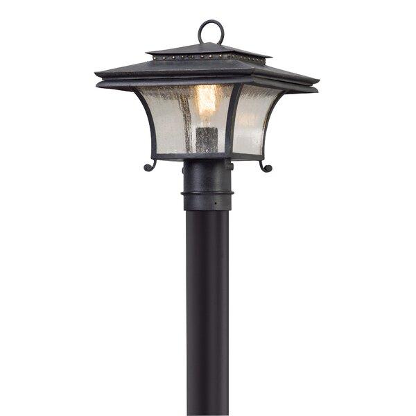 Colesville Outdoor 1-Light Lantern Head by Fleur De Lis Living