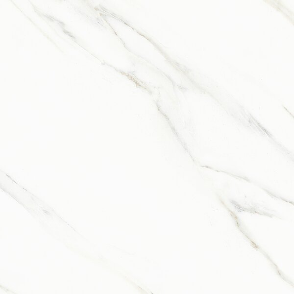 Arctic Glazed 24 x 24 Porcelain Field Tile in White by Multile