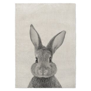 Bunny Rug Wayfair