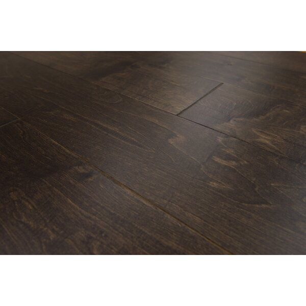 Estonia 6.5 Engineered Birch Hardwood Flooring in Coffee by Branton Flooring Collection