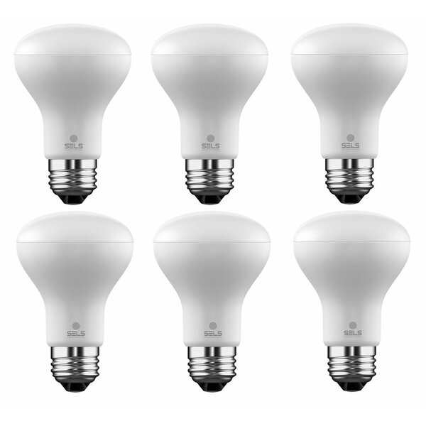 6W E26 Dimmable LED Floodlight Light Bulb (Set of 6) by SELS - Smart Era Lighting Systems