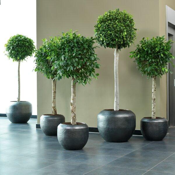 Loft Metal Pot Planter by BIDKhome
