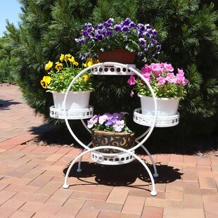 Thayne 4 Tier Ferris Wheel Indoor Outdoor Plant Stand