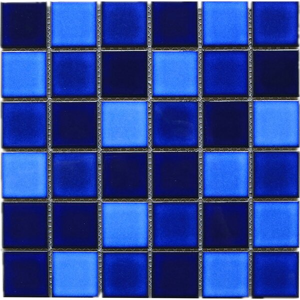 Tropical Night 2 x 2 Porcelain Tile in Blue by Multile