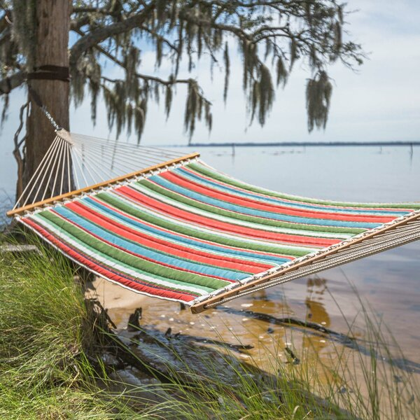 Lizeth Double Tree Hammock By Freeport Park