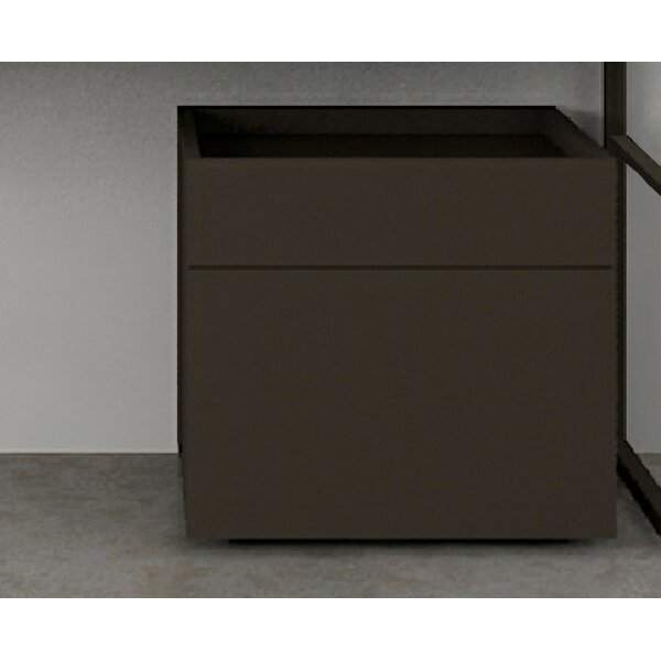 Marco 23.63 W x 18.9 H Cabinet by Ronbow