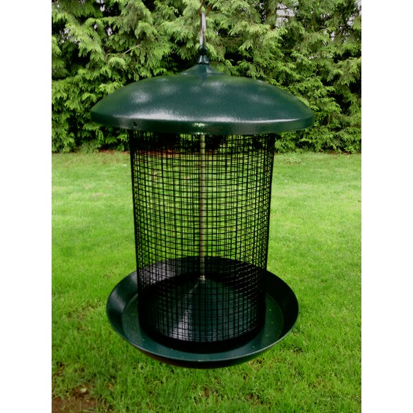 Sunflower Tube Bird Feeder by Zenport