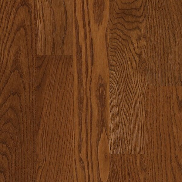Paradise Random Width Solid Oak Hardwood Flooring in Sunny Hills by Albero Valley