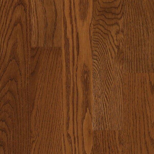 Paradise Random Width Solid Oak Hardwood Flooring in Sunny Hills by Albero Valley