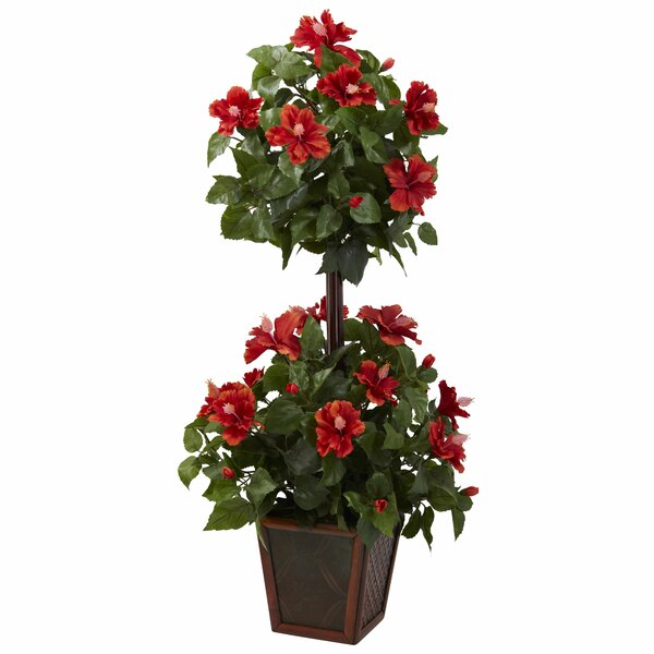 Hibiscus Square Topiary in Planter by Darby Home Co