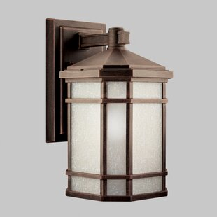 Affordable Robles 1-Light Outdoor Wall Lantern By Loon Peak
