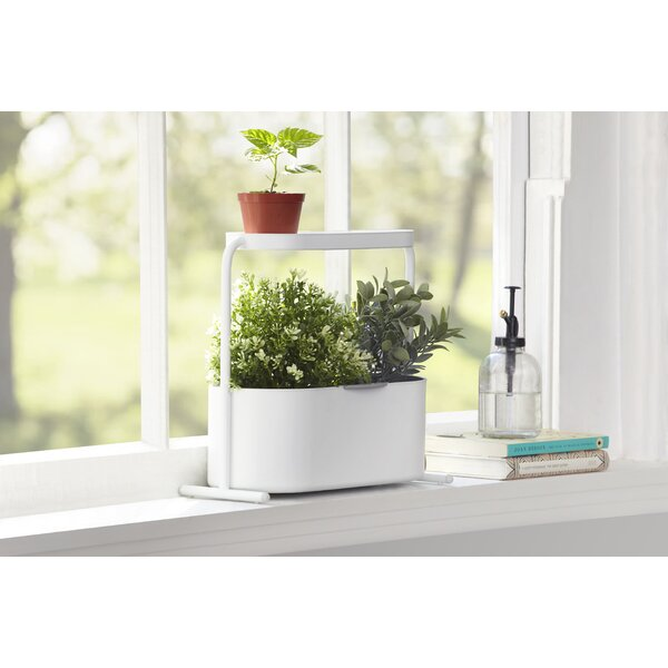 Giardino Planter Box by Umbra