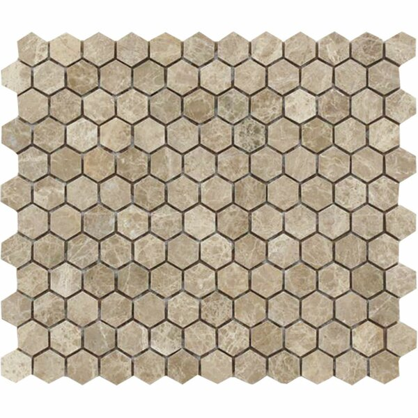 Emperador Hexagon 1 x 1 Stone Mosaic Tile in Light Polished by Parvatile