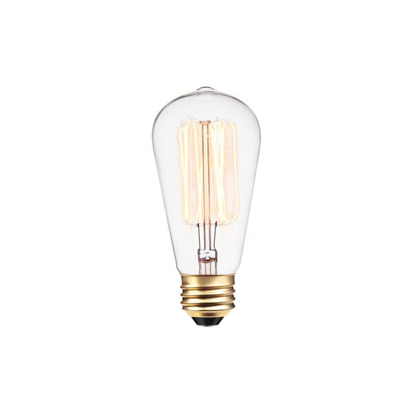40W E26 Dimmable Incandescent Edison Light Bulb (Set of 12) by Globe Electric Company