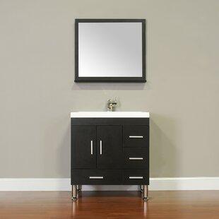 Affordable Waldwick 30 Single Modern Bathroom Vanity Set with Mirror ByWade Logan