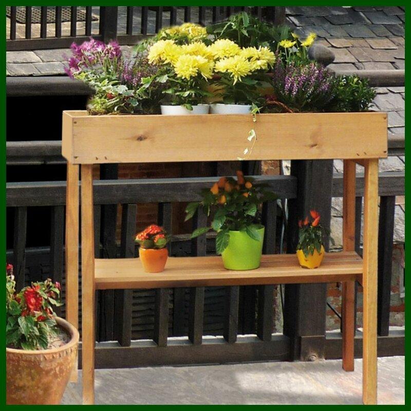 dCor design 78cm x 39cm Wooden Raised Flower Bed | Wayfair ...