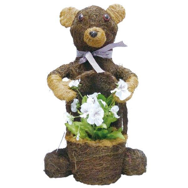 Brushwood Bear Topiary by Gardener Select