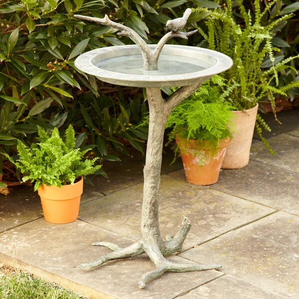 Bird & Branch Birdbath by Birch Lane™